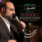Hozour - I (Mohammad Esfahani Live In Concert) by Mohammad Esfahani