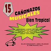 Play & Download 15 Canonazos Musicales Bien Tropical by Various Artists | Napster