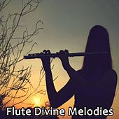 Play & Download Flute Divine Melodies by Krishna | Napster