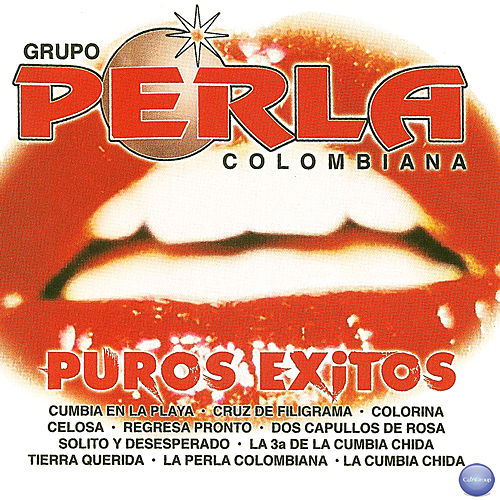 Play & Download Puros Exitos by Grupo Perla Colombiana | Napster