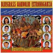 Bluegrass Mandolin Extravaganza by Bluegrass Mandolin Ensemble