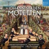 Play & Download Johann Staden: Motetten by Windsbacher Knabenchor | Napster