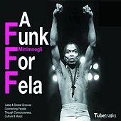 Play & Download A Funk for Fela by Minimoogli | Napster