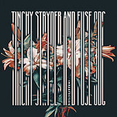 Imperfection - Mixes by Tinchy Stryder