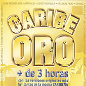 Play & Download Caribe Oro by Various Artists | Napster