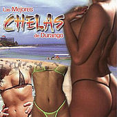 Play & Download Las Mejores Chelas De Durango by Various Artists | Napster