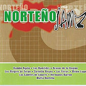 Norteno Jamz by Various Artists