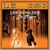 Play & Download 16 Éxitos de Oro by Various Artists | Napster