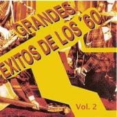 Grandes Éxitos de los 60, Vol. 2 by Various Artists
