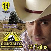 Play & Download 14 Éxitos by El Lobito De Sinaloa | Napster