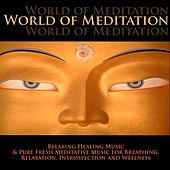 Play & Download World of Meditation - Relaxing Healing Music & Pure Fresh Meditative Music for Breathing, Relaxation, Introspection and Wellness by Radio Meditation Music | Napster