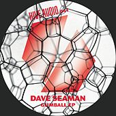 Play & Download Gumball Ep by Dave Seaman | Napster