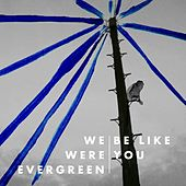 Be Like You by We Were Evergreen