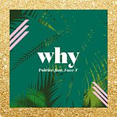 Play & Download Why by Poirier | Napster