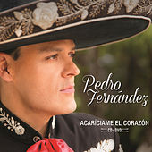 Play & Download Acaríciame El Corazón by Pedro Fernandez | Napster