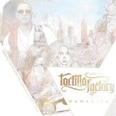 Play & Download Mamacita (feat. Gabriel Zavala, Rick Balderrama & Julio el Catras) by Tortilla Factory | Napster