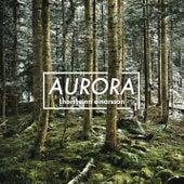 Aurora by Thorsteinn Einarsson