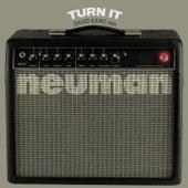Turn It (David Kano Remix) de Neuman
