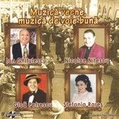 Muzica veche muzica de voie buna by Various Artists