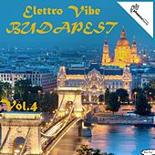 Elettro Vibe Budapest, Vol. 4 by Various Artists