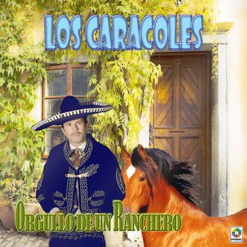 Play & Download Orgullo de un Ranchero by Los Caracoles   Napster