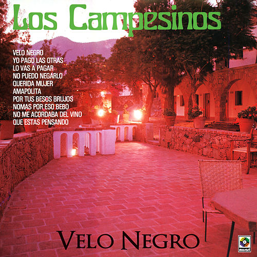 Play & Download Velo Negro by Los Campesinos! | Napster