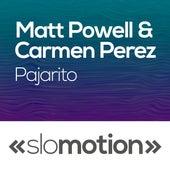 Play & Download Pajarito by Carmen Perez | Napster