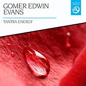 Play & Download Tantra Energy by Gomer Edwin Evans | Napster