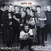 Play & Download Audacity / After Hour Animals Split by Various Artists | Napster