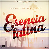 Play & Download Esencia Latina by Various Artists | Napster