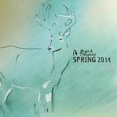 Spring 2014 by Various Artists