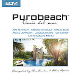 Puro Beach Oasis Del Mar by Various Artists
