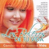 Los Boleros de Tu Vida by Various Artists