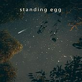 Starry Night by Standing Egg