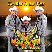 Play & Download Un Dia a la Vez by Trio Halcon Huasteco | Napster