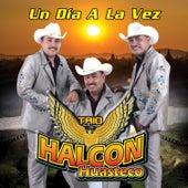 Un Dia a la Vez by Trio Halcon Huasteco