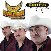 Play & Download Exitos by Trio Halcon Huasteco | Napster