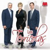 Play & Download Me Muero por Mirarte by Los Terricolas | Napster