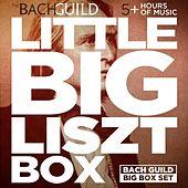 Big Lizst Box by Various Artists