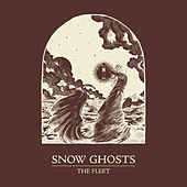 Play & Download The Fleet by Snow Ghosts | Napster