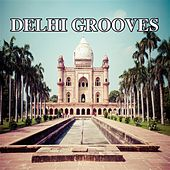 Delhi Grooves by Various Artists