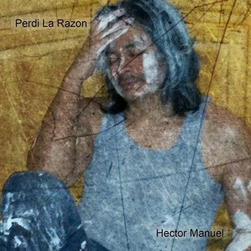 Play & Download Perdi la Razon by Hector Manuel | Napster