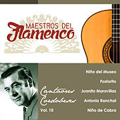 Play & Download Maestros del Flamenco, Vol. 10 by Various Artists | Napster
