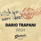 Wish by Dario Trapani