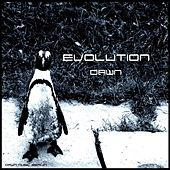 Play & Download Evolution by Dawn | Napster