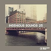 Play & Download Ingenious Sounds, Vol. 25 by Various Artists | Napster
