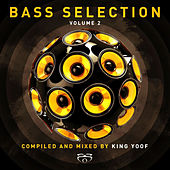 Play & Download Bass Selection, Vol 2 by Various Artists | Napster