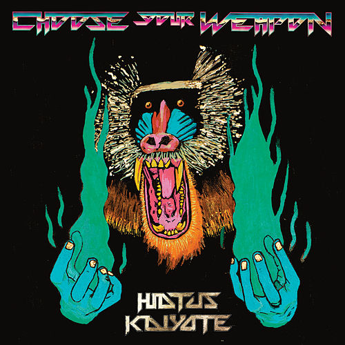 Choose Your Weapon (Track by Track Commentary) by Hiatus Kaiyote
