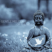 Gentle Melodies of the Mind by Various Artists