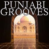 Punjabi Grooves by Various Artists